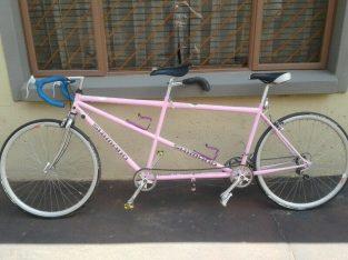 Tandem road bicycle